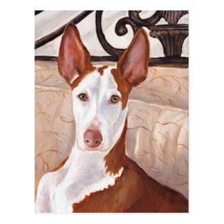 Ibizan Jagdhund-Kunst-Postkarte Postkarte