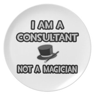 Ich bin ein Berater… nicht ein Magier Melaminteller