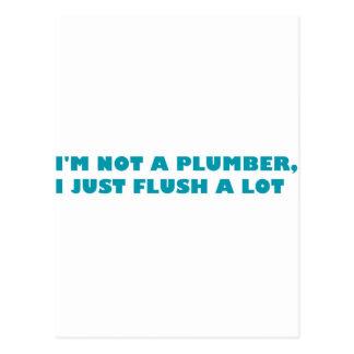 Ich bin nicht ein Klempner, ich gerade bündig viel Postkarte