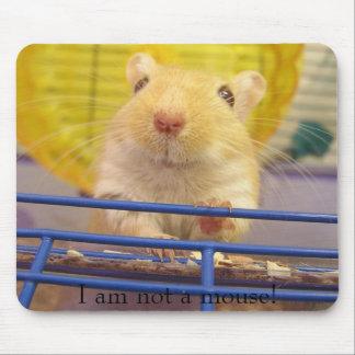 Ich bin nicht eine Maus! Mousepads