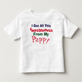Ich erhalte mein Awesomeness von meinem Pappy T - Kleinkinder T-shirt