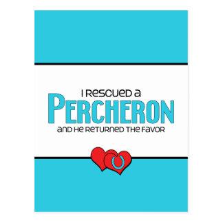 Ich rettete ein Percheron (männliches Pferd) Postkarte