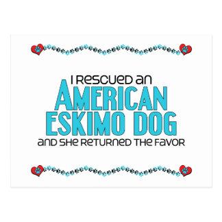 Ich rettete einen amerikanischen Eskimohund Postkarten