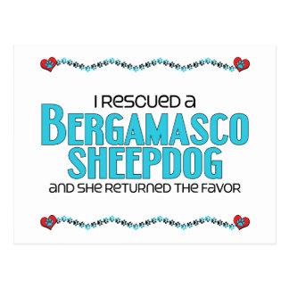 Ich rettete einen Bergamasco Schäferhund Postkarte
