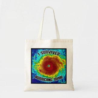 Ich überlebte Hurrikan-Irma-Tasche Tragetasche