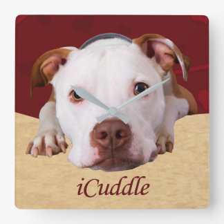 iCuddle Pitbull Quadratische Wanduhr