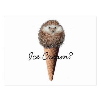 Igels-Eiscreme Postkarte