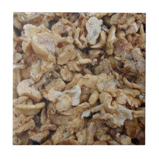 Igels-Pilze Kleine Quadratische Fliese