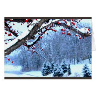 Ihnen eine schöne Weihnachtsjahreszeit wünschen Karte