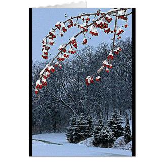 Ihnen eine schöne Weihnachtsjahreszeit wünschen! Karte