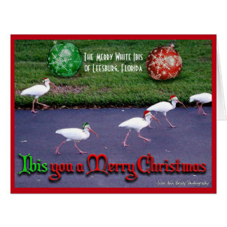 Ihnen frohen Weihnachten wünschen Karte