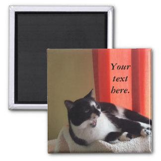 Ihr Text fasst Tuxedo-Katzen-Foto-Magneten ab Quadratischer Magnet