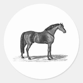 Illustration Arabe de cheval de 1800s vintages - Adhésif Rond