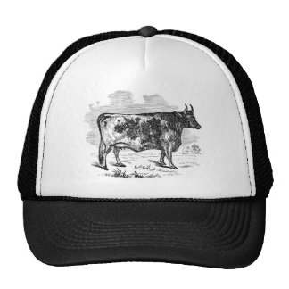 Illustration personnalisée par vache vintage de casquette