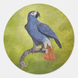 Illustration vintage de perroquet d'oiseaux adhésif rond