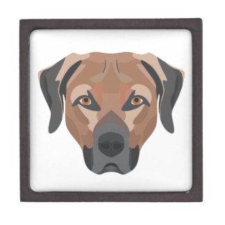 Illustrations-Hund Brown Labrador Schmuckkiste
