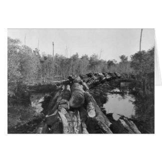 Im Florida Everglades abholzen, 1952 Karte