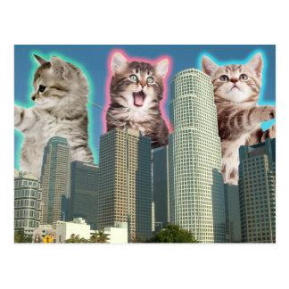 Im Stadtzentrum gelegene Katzen Postkarte