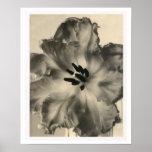 Impression florale noire et blanche poster