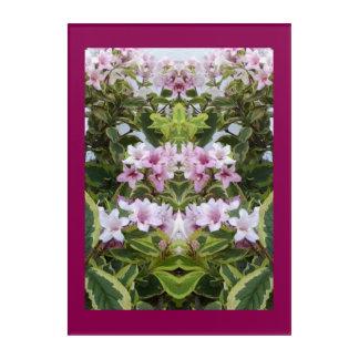 Impressions En Acrylique Esprit du plante 3