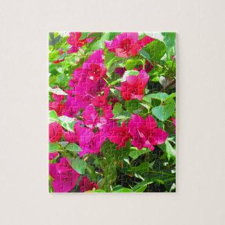 Indien-Reise-Blumen-Bouganvilla-Blumenemblem