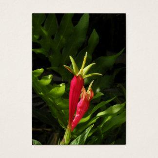 Indische rosa Wildblume ATC-Foto-Karte Visitenkarte