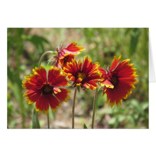 Indische umfassende Wildblumen Mitteilungskarte