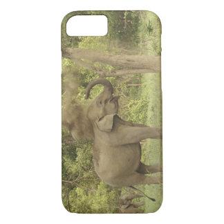 Indischer/asiatischer Elefant, der Staubbad, iPhone 8/7 Hülle