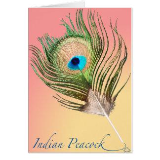 Indischer Pfau-Schwanz Karte