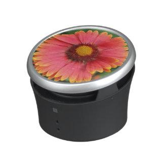 Indischer umfassender Wildblume Bumpster Lautspercher