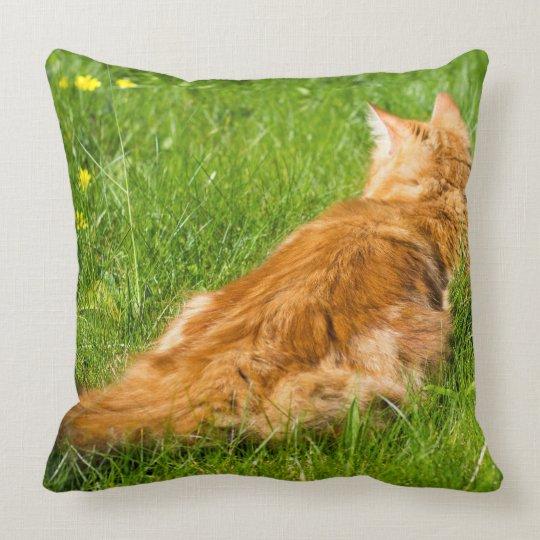 Ingwer-Katze im Frühjahr Kissen