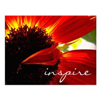 """""""Inspirieren Sie"""" Fotopostkarte des orange Postkarte"""