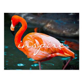 """""""Inspirieren Sie"""" hübsches orange rosa Postkarte"""