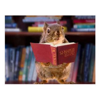 Intelligentes Eichhörnchen, das ein Wörterbuch Postkarte