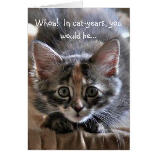 Intensive Kätzchen-alles- Gute zum Geburtstagkarte Karte