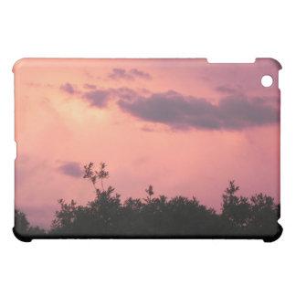 Ipad Glenwood Springs, Co. iPad Mini Hülle