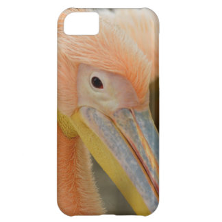 IPhone 5 Fall, der Sie Pelikan aufpasst iPhone 5C Hülle