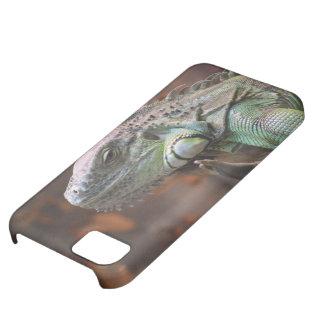 IPhone 5 Fall mit Leguaneidechse iPhone 5C Hülle