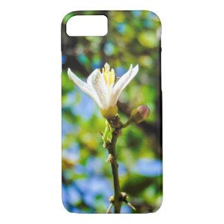 iPhone 7 - Zitronen-Blüten-Kasten, kundengerecht iPhone 8/7 Hülle