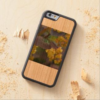 IPhone Abdeckung Bumper iPhone 6 Hülle Kirsche