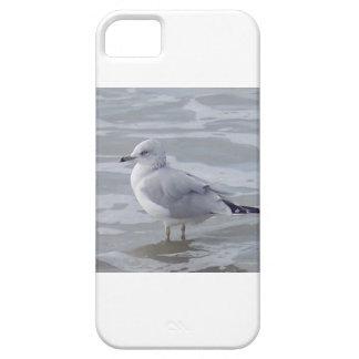 iphone Fall Vatertagsgeschenk Schutzhülle Fürs iPhone 5