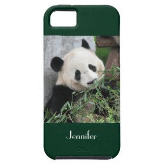 iPhone SE/5/5s Fall-Panda-Grün-Hintergrund iPhone 5 Schutzhüllen