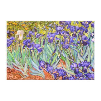 Iris-Vincent van Gogh-schöne Kunst Gespannter Galeriedruck