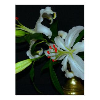 Irische Entwurf-Messing und Blumen-Sammlung Postkarte
