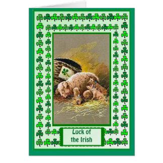 Irisches Glück, Piggy und Ferkel Karte
