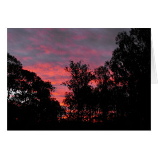 Ironbark Sonnenuntergang Karte