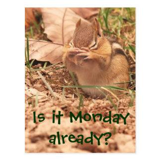 Ist es Montag bereits? Chipmunk-Postkarte Postkarte