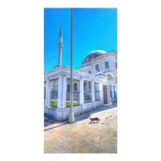 Istanbul-Moscheen-Katze Karte
