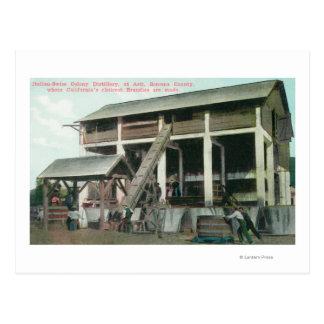 Italienisch-Schweizer Kolonien-Weinbrand-Brennerei Postkarte