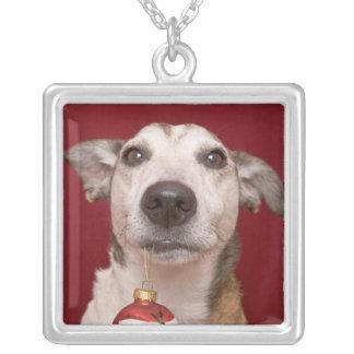 Jack-Russell-Terrier, der Weihnachtsverzierung Versilberte Kette